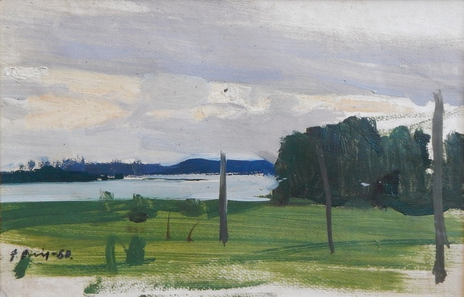Landscape with the river